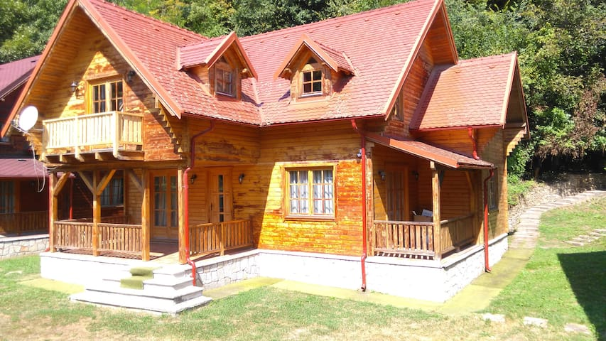 Charming  Wood House villa under the forest