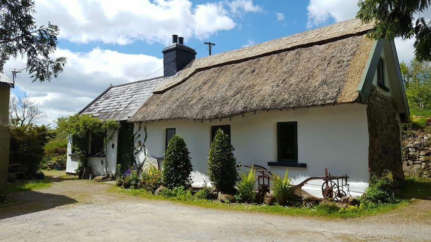 Thatched Cottage in Co Clare