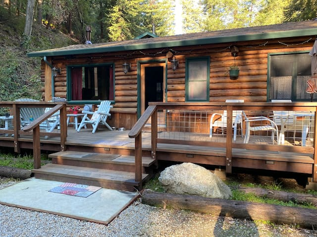 Ryder Log Cabin, hiking and fido friendly