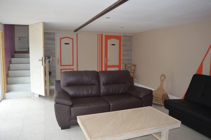 un canapé lit en guise d'une 2éme literie(140x190)  en arrière plan:2 portes 1 toilette et la salle d'eau