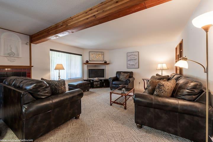 Mountainside living room