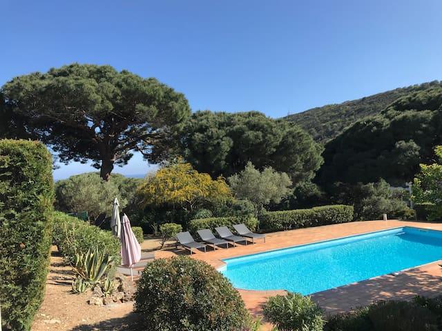 Traum Wohnung Ramatuelle Escalet Pool Meerblick