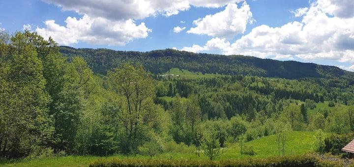 Panorama sur la montagne