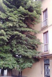 appartamento con salone open space - トリノ