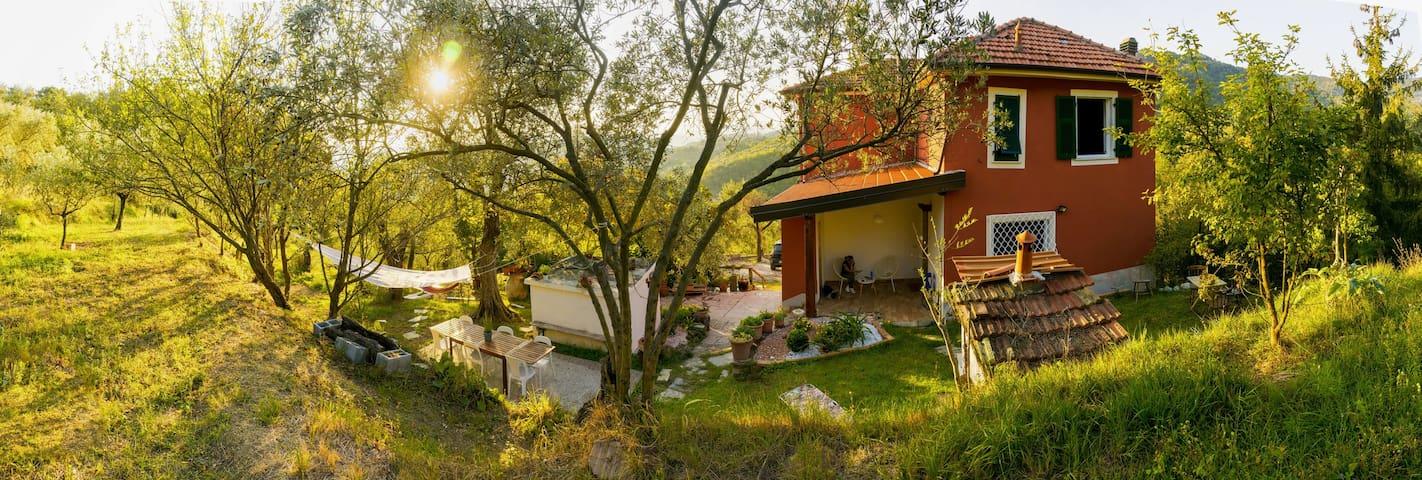 La casa del nonno.  COD. Citra 011027-LT-0056