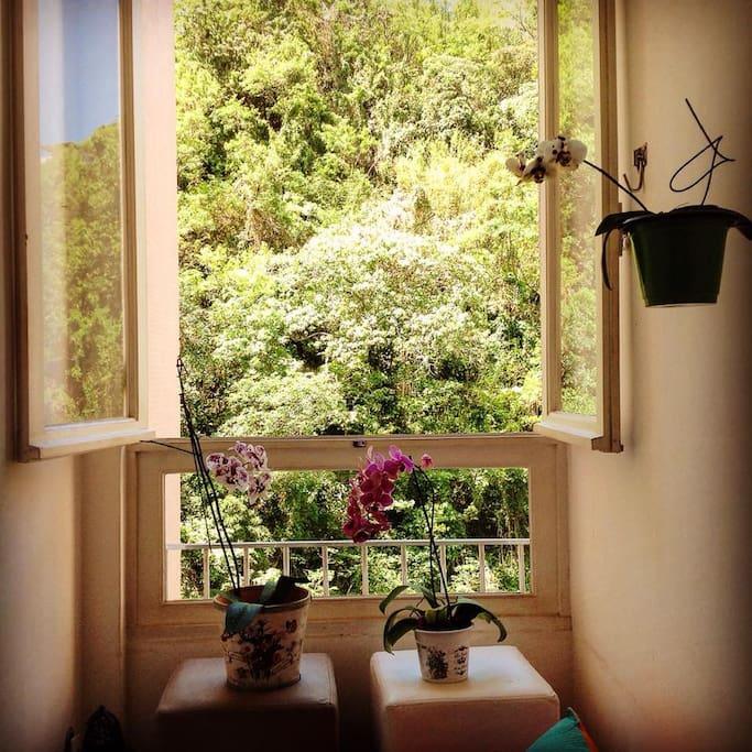 Linda janela da sala