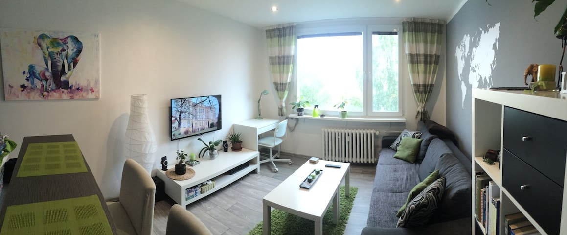 Cosy flat on the border with Germany + 2 bycicle - Ústí nad Labem - Apartmen