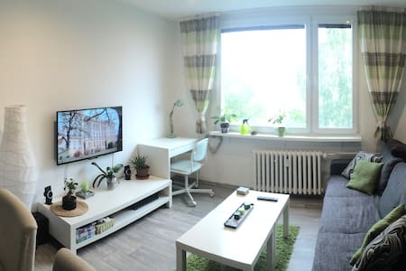 Cosy flat on the border with Germany + 2 bycicle - Ústí nad Labem - Leilighet