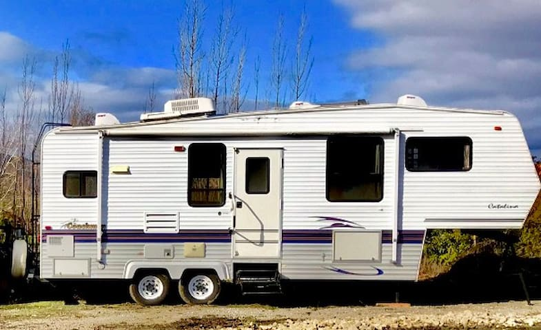 Carter Lane RV