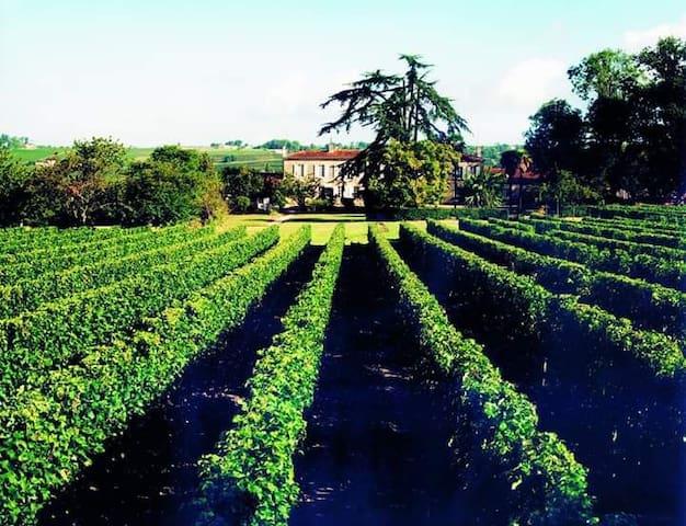 2 chambres privées  au coeur des vignes