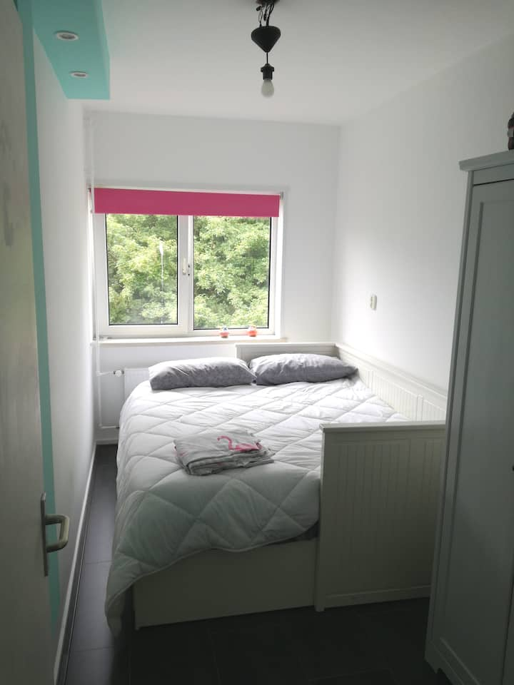 Comfortable and lovely room in Zaandam