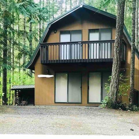 Lake Cushman Retreat 1176 sq ft 4-5 guests