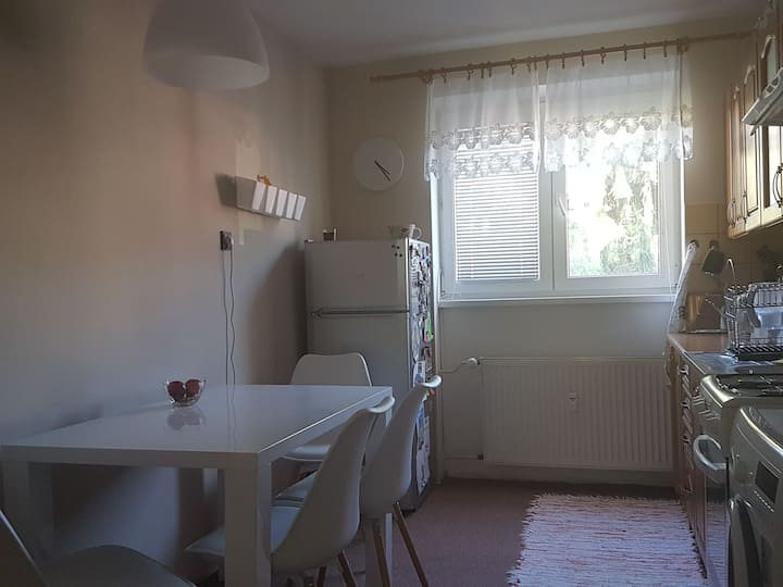 Fully furnished nice flat in the city center