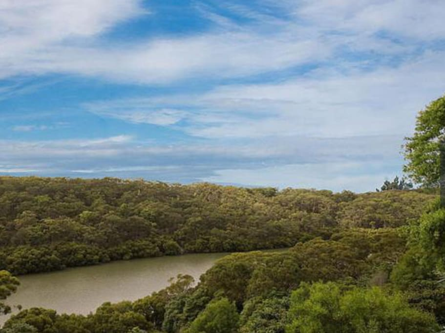 View from balcony overlooking Australian bush and river.