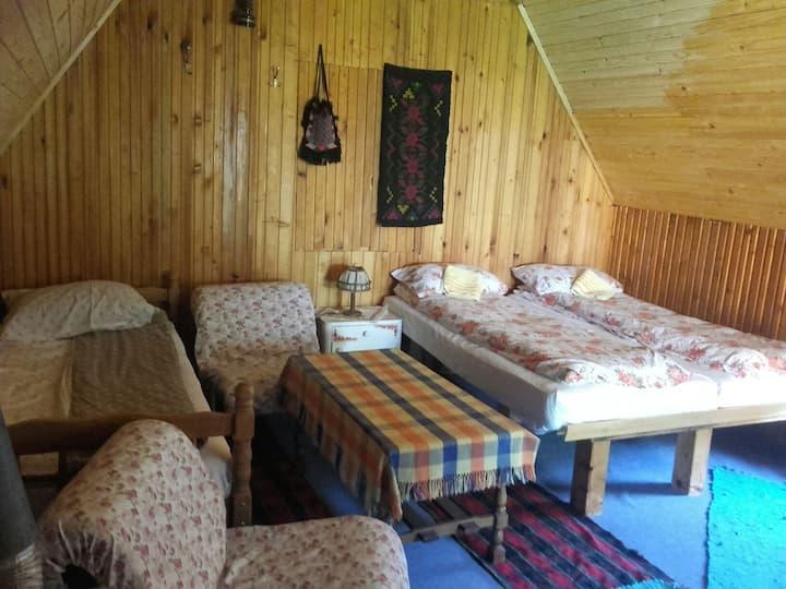 Rural tourist household Kovacevic