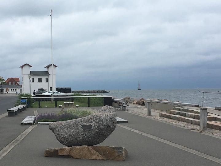 Ferielejlighed tæt ved Limfjorden