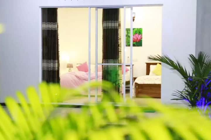 Lotus dreams guesthouse