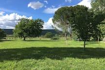 Jardin du Mas de L'Olivier, vue sur les monts de Vaucluse
