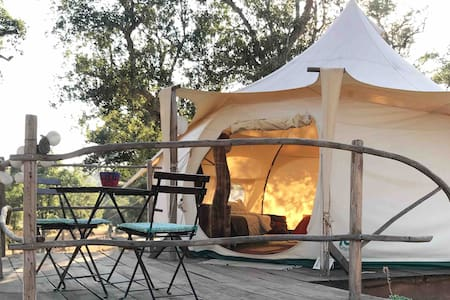Sustainable Glamping - The Valley Hub