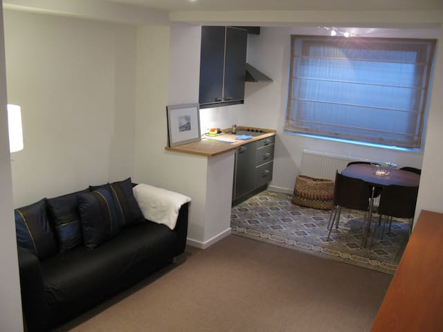 YOUR PERFECT PIED A TERRE in Brussels! - Ixelles - Apartamento