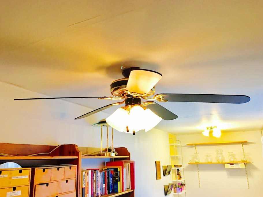 room has a ceiling fan