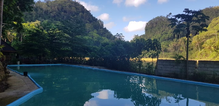 Duangon Eco. Farm & Resort with Pool, Bilar Bohol