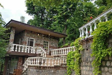 Harmony | Chateau de TATLI | Hilltop, Dehradun