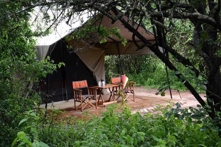 Ensuite safari tents