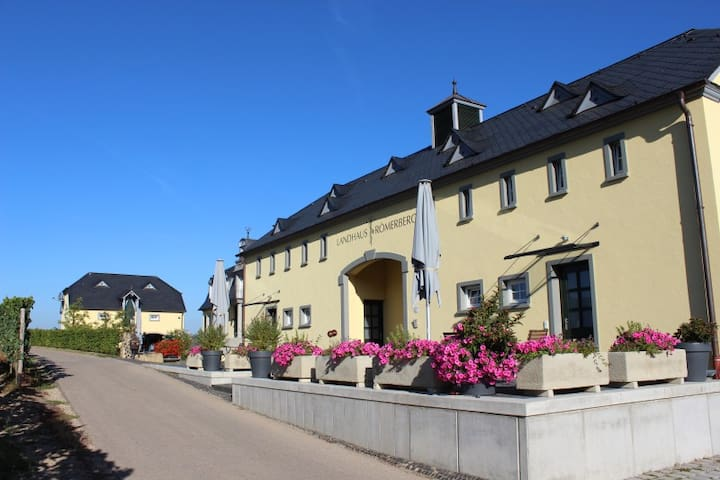 5*Style Appartements mit traumhaftem Panoramablick - Oberbillig