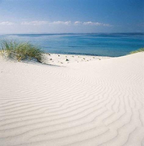 Campana Beach near Villa Baires