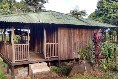 Paradise Falls Private Mountain Cabins - Guapiles - Kabin