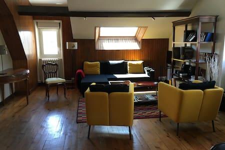 Bel appartement meublé dans le centre du Chambon. - Le Chambon-sur-Lignon - Apartmen