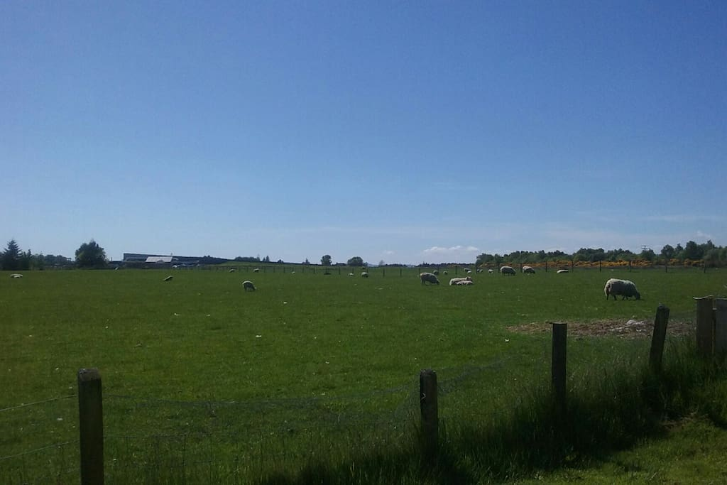 Great location close to Culloden Battlefield and Clava Cairns
