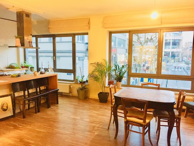 Spacious appartement in the centre of Brussels !