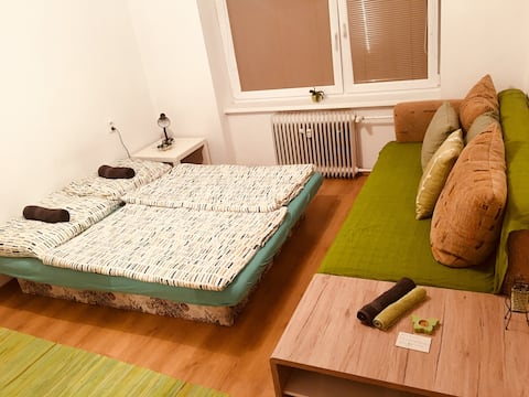 Spacious room in a shared apt 4min walk to centre