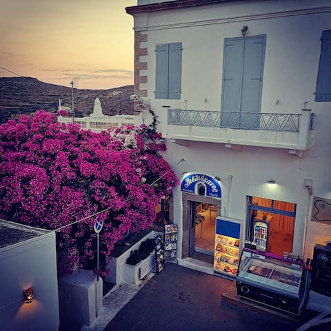 The little and large bougainvillea homes