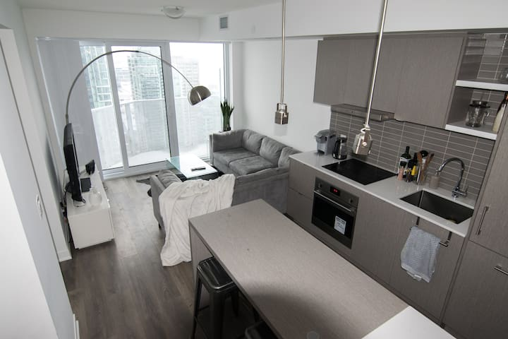 Luxurious, Contemporary 1 Bed, 1 Bath - Downtown