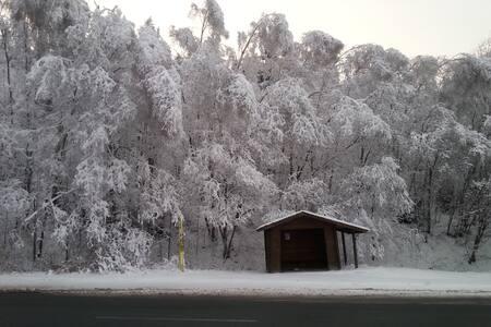 Chata u lesa a sjezdovky - Zlaté Hory - House