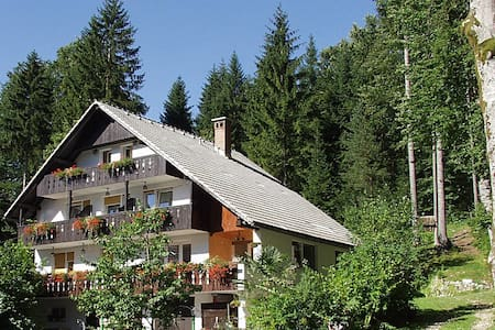 Apartments & room Destina Bohinj 2