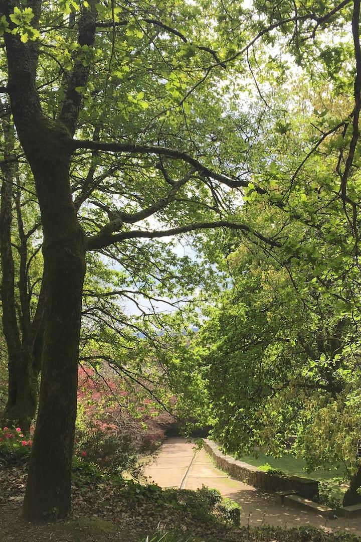 Parque de Bonaval