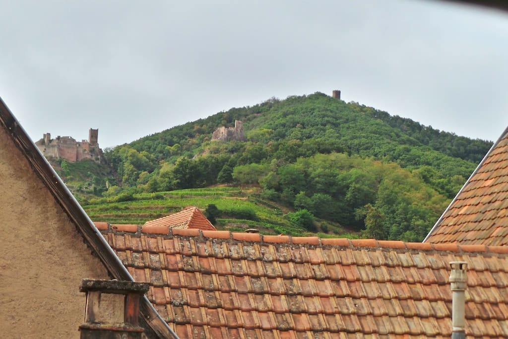 View on old roofs, mountains, castles