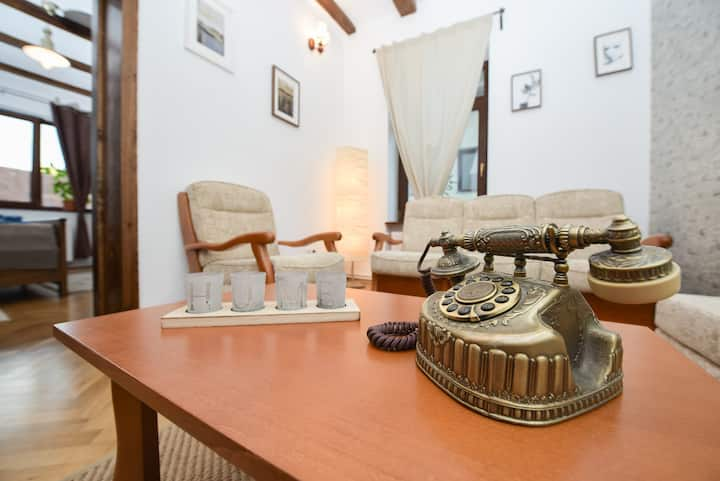 Vintage Apartment- Buzoianu Residence