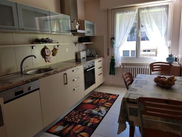 Grand calme appartement de 3,5p ensoleillé +balcon