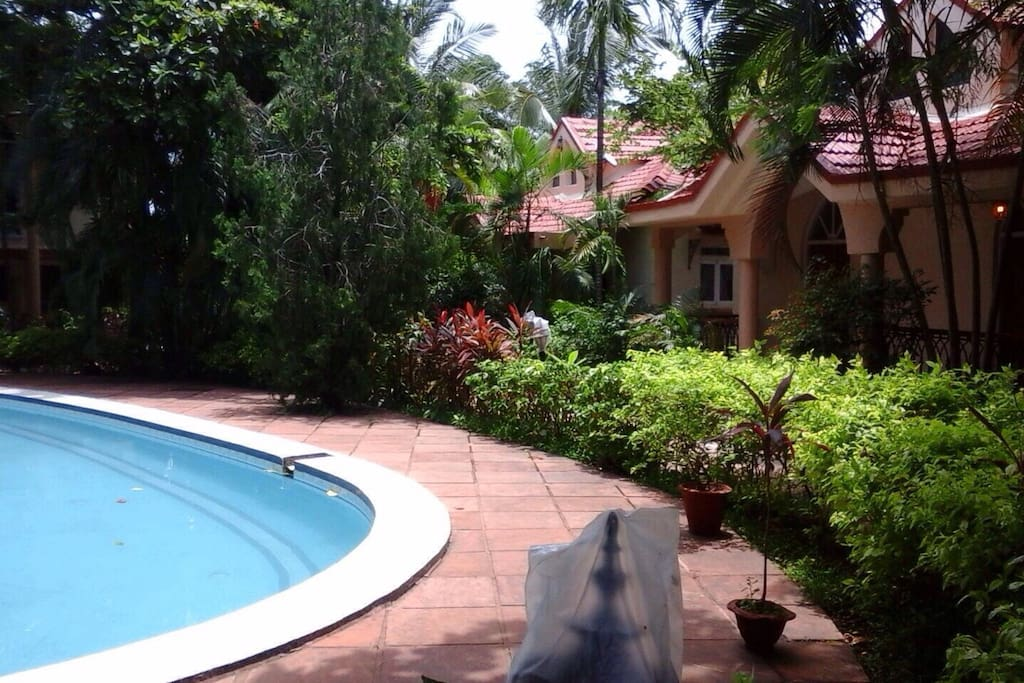 Complex pool area with serene quiet and privacy modulated surrounding