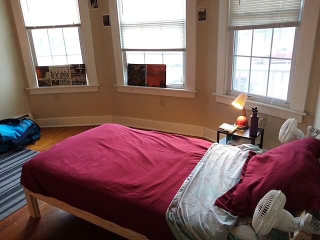 One Bedroom, Prospect Hill