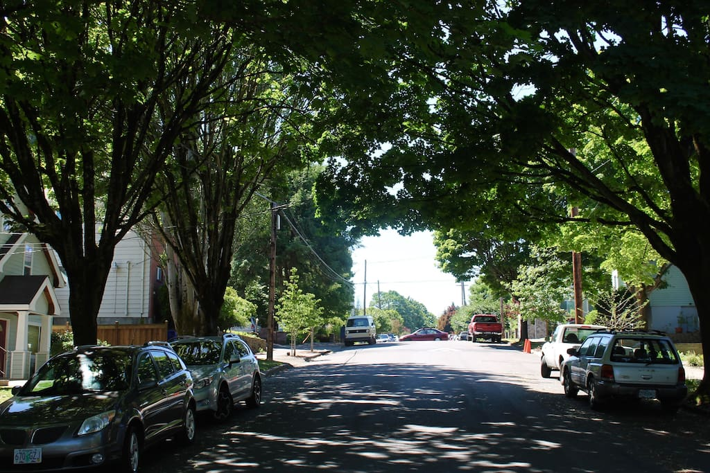 We're located on a tree-lined street typical of this old Portland neighborhood. Parking is rarely a problem.