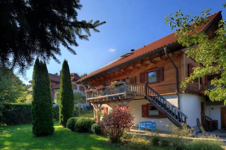 Your own flat in a quiet village near St. Blasien! - Dachsberg (Südschwarzwald) - Byt