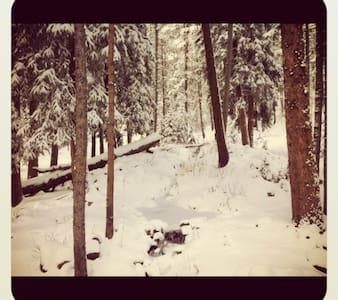 Cozy Mountain Retreat - ブルーリバー - アパート