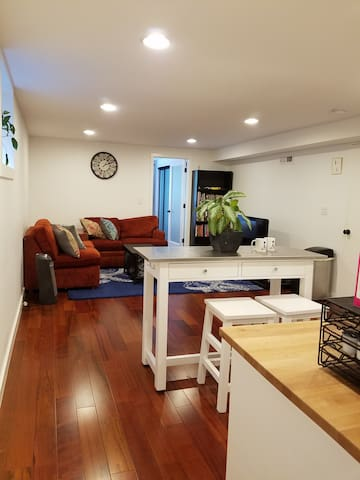 Remodeled Basement Apartment in Magnolia