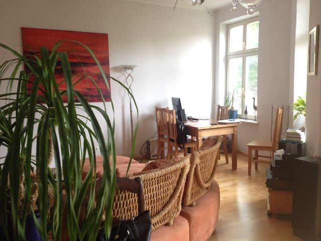 Gemütliche Wohnung am schönen Park Babelsberg - Potsdam - Pis